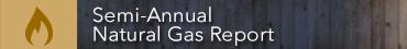 gas-report.jpg